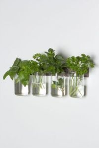 Anthropologie glass set